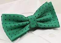 Zelený motýlik s bodkami